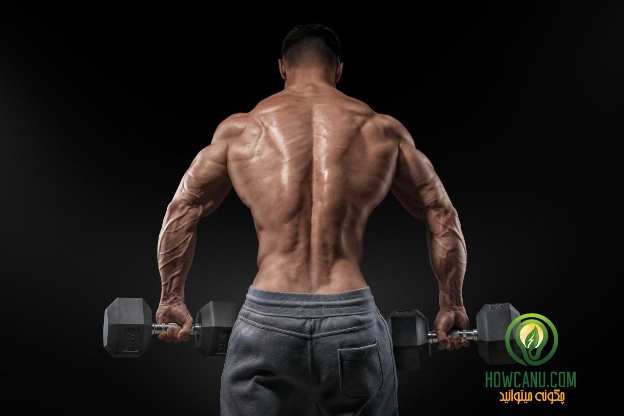 Bodybuilding_Men_Human_487388